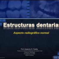Aspecto radiográfico normal de los tejidos dentarios (renovado)